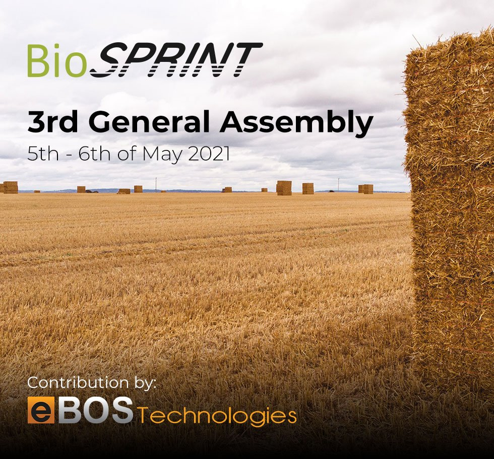 The BioSPRINT partners plan the way ahead at the project's 3rd General Assembly